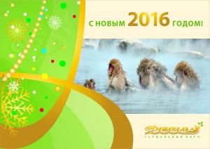 С_НОВЫМ_2016_ГОДОМ_2